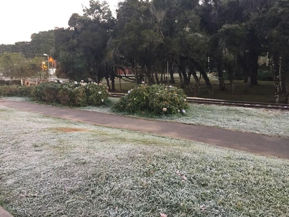 Grama amanheceu encoberta por gelo na manhã desta segunda-feira (21) (Foto: Solange Gonçalves/Arquivo pessoal)