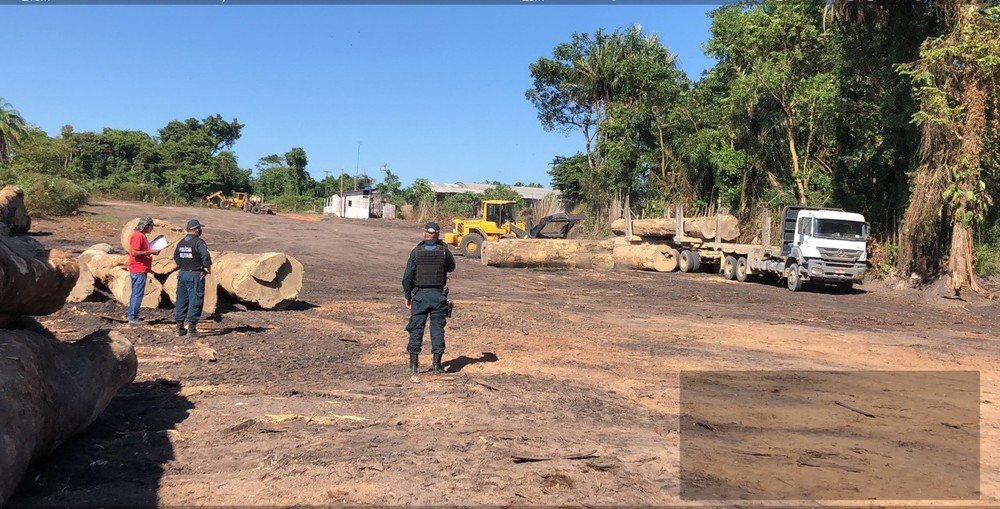 1,000m3 of logs and lumber reportedly seized in Santa Maria do Uruará