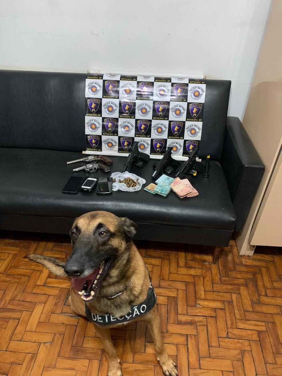 Ação da PM contou com o apoio do canil em Botucatu  — Foto: Polícia Militar /Divulgação