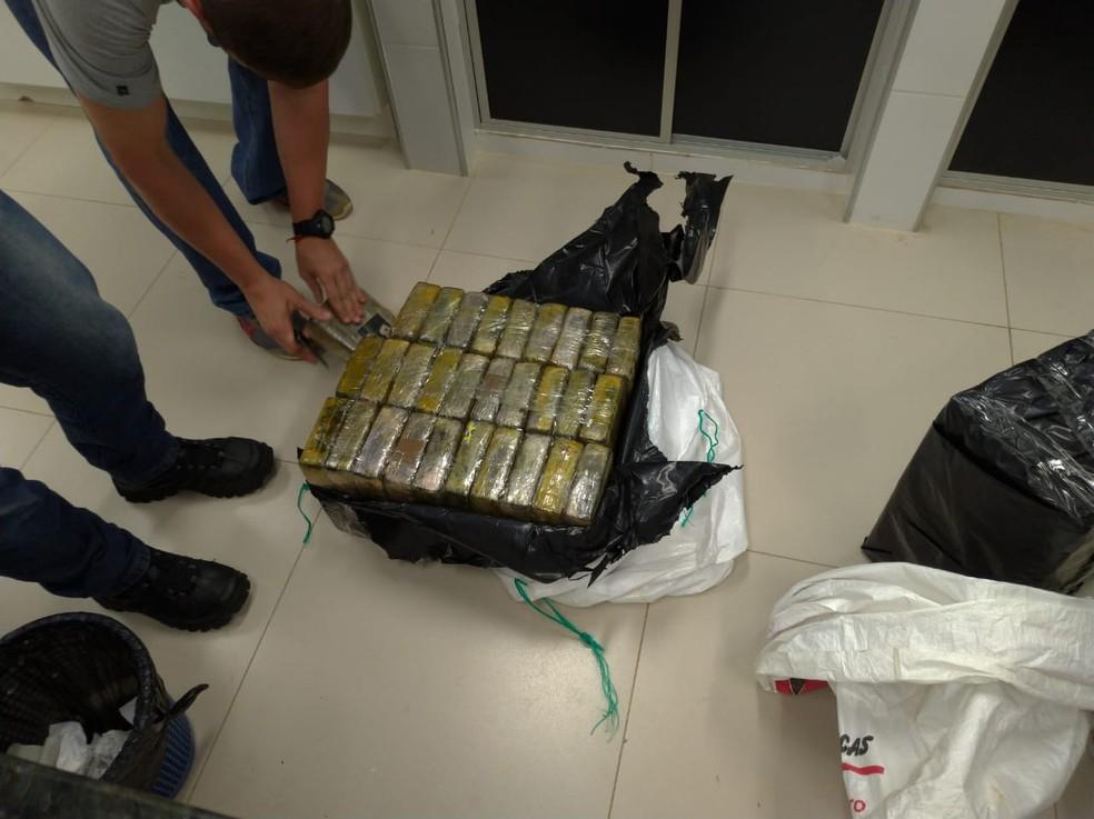 Quantidade de droga apreendida foi recorde no estado — Foto: Divulgação/Polícia Federal