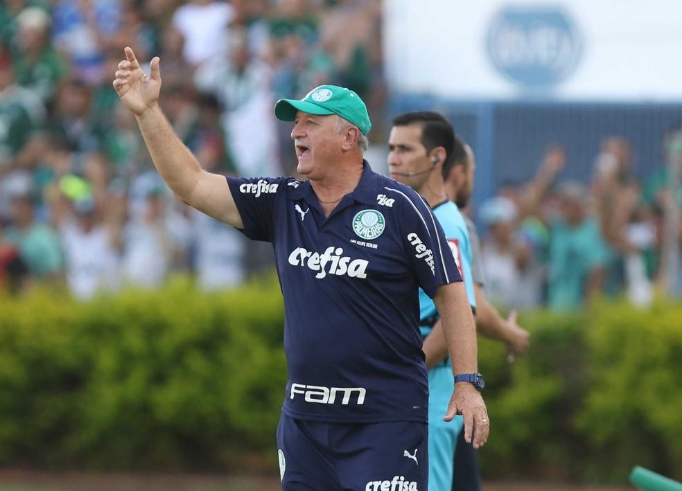 Palmeiras de Felipão tenta sua primeira vitória em clássicos na temporada — Foto: Célio Messias / Estadão Conteúdo