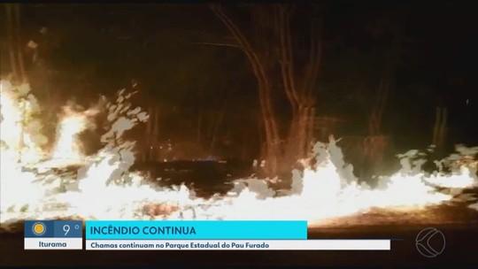 Bombeiros e brigadistas combatem novo foco de incêndio no Parque do Pau Furado em Uberlândia