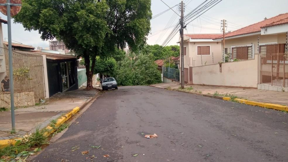 Tempestade de poeira provocou estragos em Presidente Prudente (SP) na tarde desta sexta-feira (1º) — Foto: João Lucas Martins/TV Fronteira