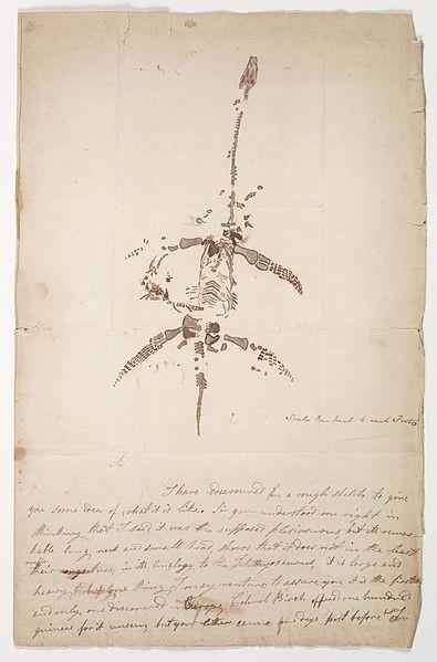 Carta de Mary Anning acerca de uma descoberta de um  plesiosauro. (Foto: Creative Commons)