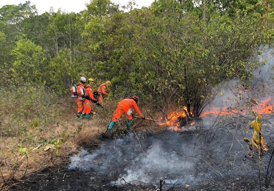 Entorno do Parque Estadual do Rio Doce volta a ser atingido por incêndios - Notícias - Plantão Diário