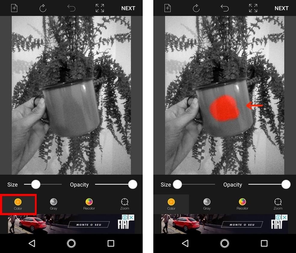 Aplicação de destaque de cor em foto preto e branca pelo app Color Pop Effects (Foto: Reprodução/Raquel Freire)