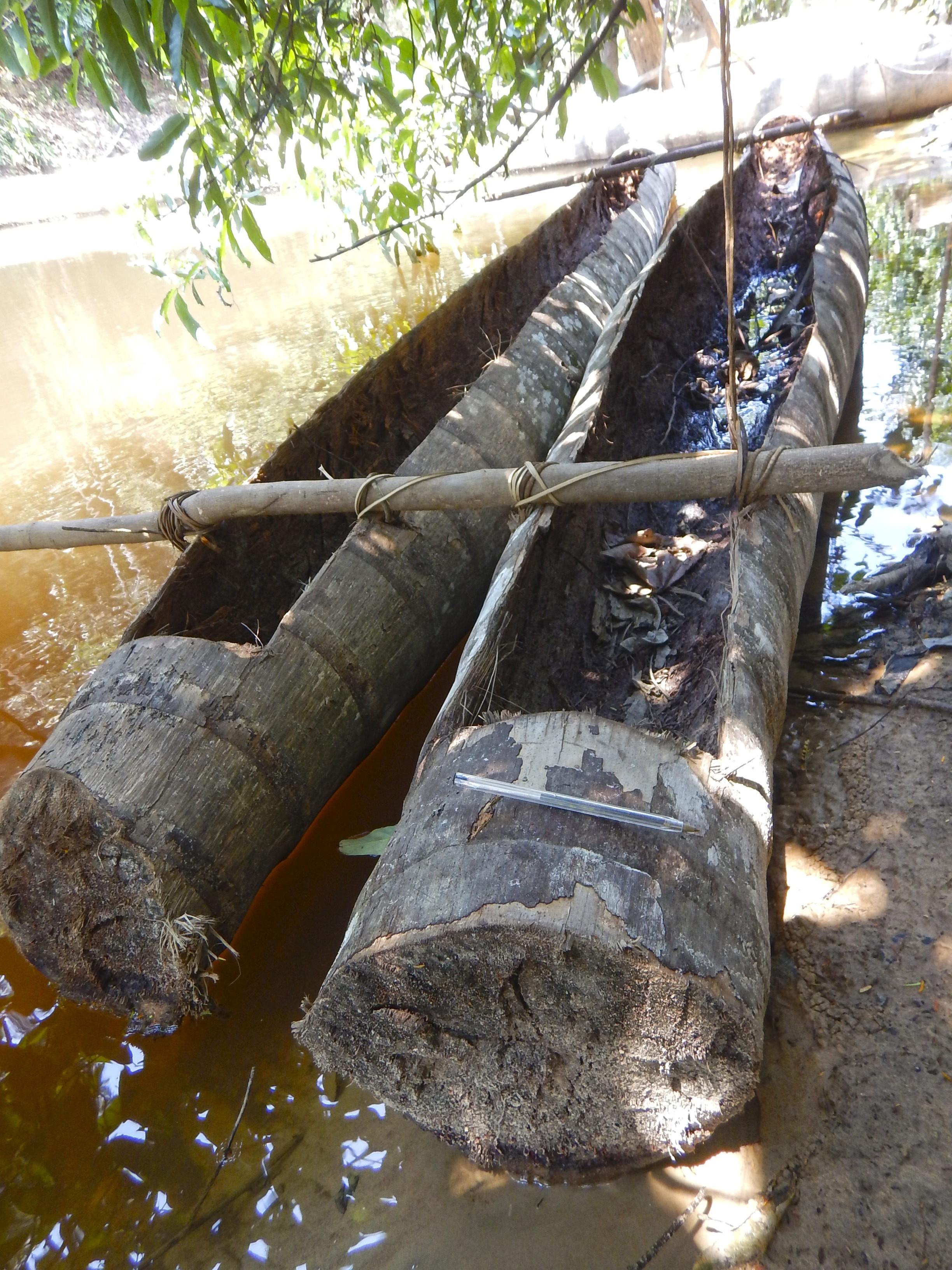 Barco encontrado pela Funai (Foto: Divulgação/ Funai)