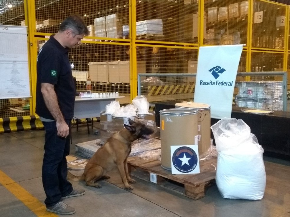 Receita Federal usou cães farejadores para identificar material (Foto: Gabriel Mira/ TV Globo)