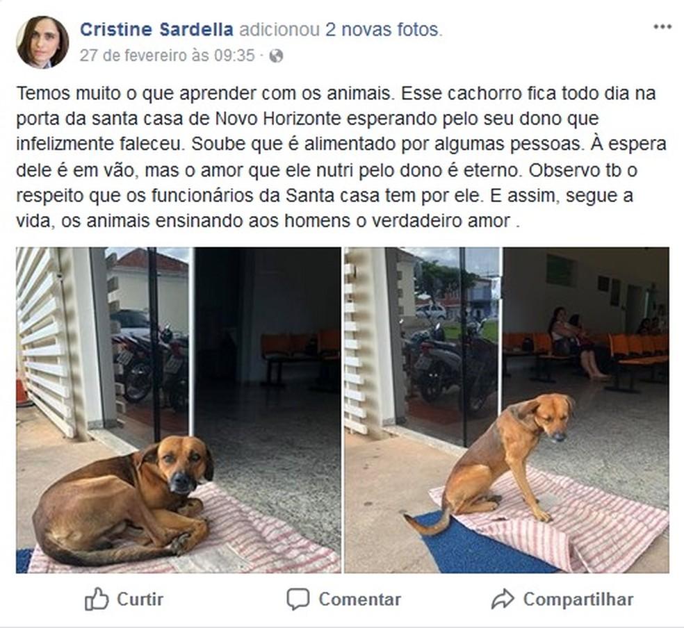 Postagem feita pela Cristine Sardella que foi ao hospital e se comoveu com a lealdade do cão (Foto: Reprodução/Facebook)