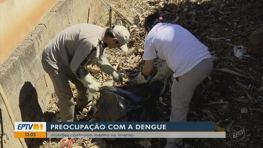 Número de casos de dengue cai 90% nas três maiores cidades do Sul de Minas em 2018