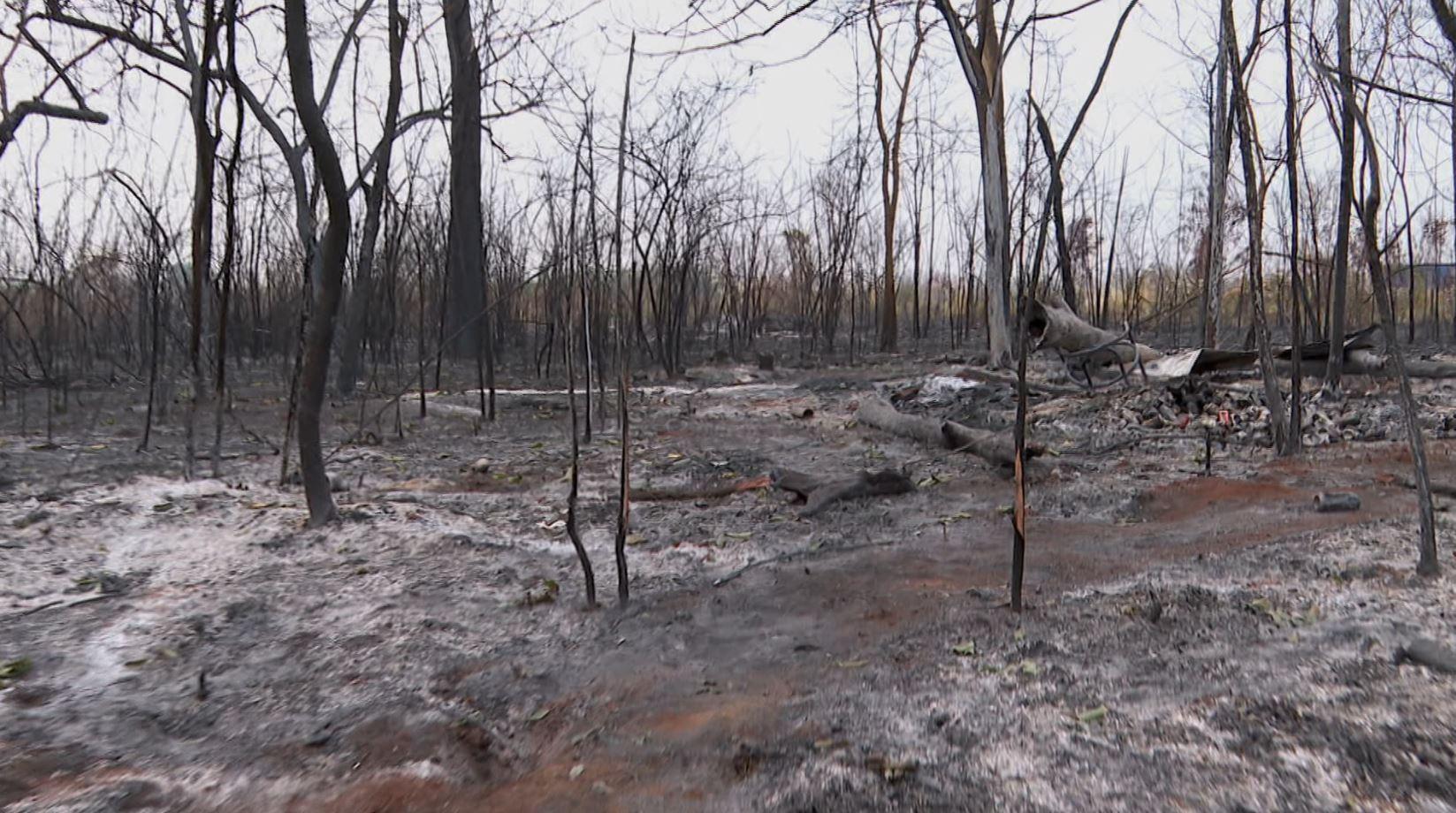 Catador de recicláveis é encontrado morto em mata que pegou fogo em Ribeirão Preto, SP