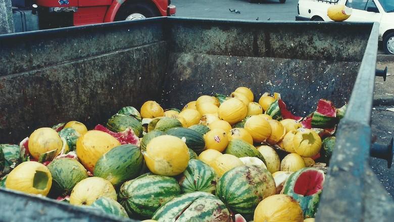desperdicio-alimentos-frutas (Foto: Núcleo Editorial/CCommons)