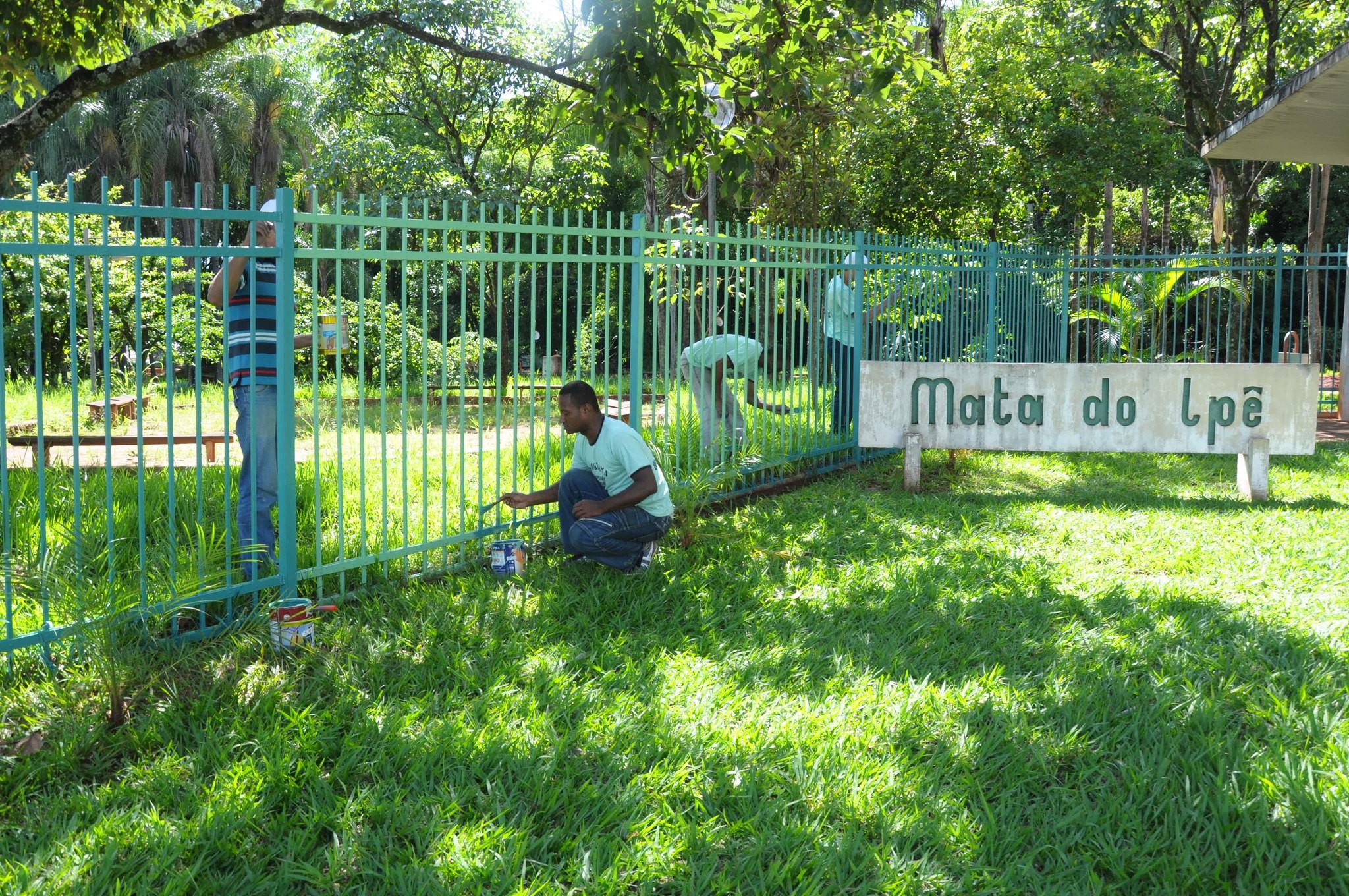 Em celebração ao Dia da Árvore, Mata do Ipê é reaberta em Uberaba