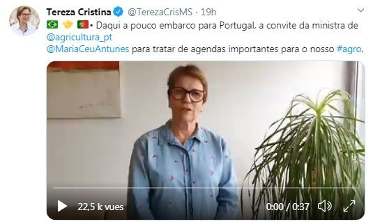 Tereza-cristina-tweet (Foto: Reprodução/Twitter)