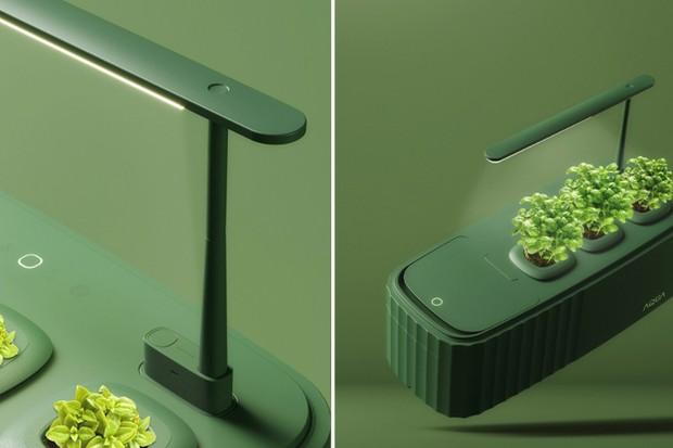Composteira ligada a horta vem com luminária e cabe em qualquer espaço (Foto: Divulgação)