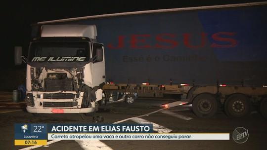 Carreta atropela vaca, atinge  carro e deixa feridos em rodovia de Elias Fausto, SP