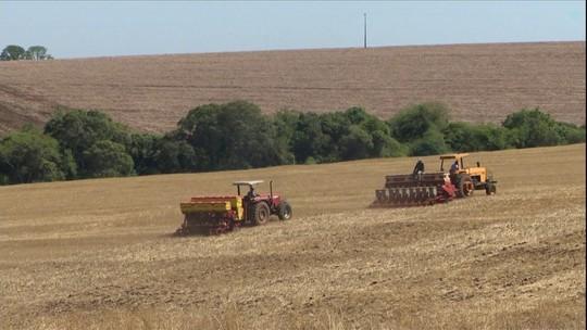 Começa o plantio de soja no Rio Grande do Sul