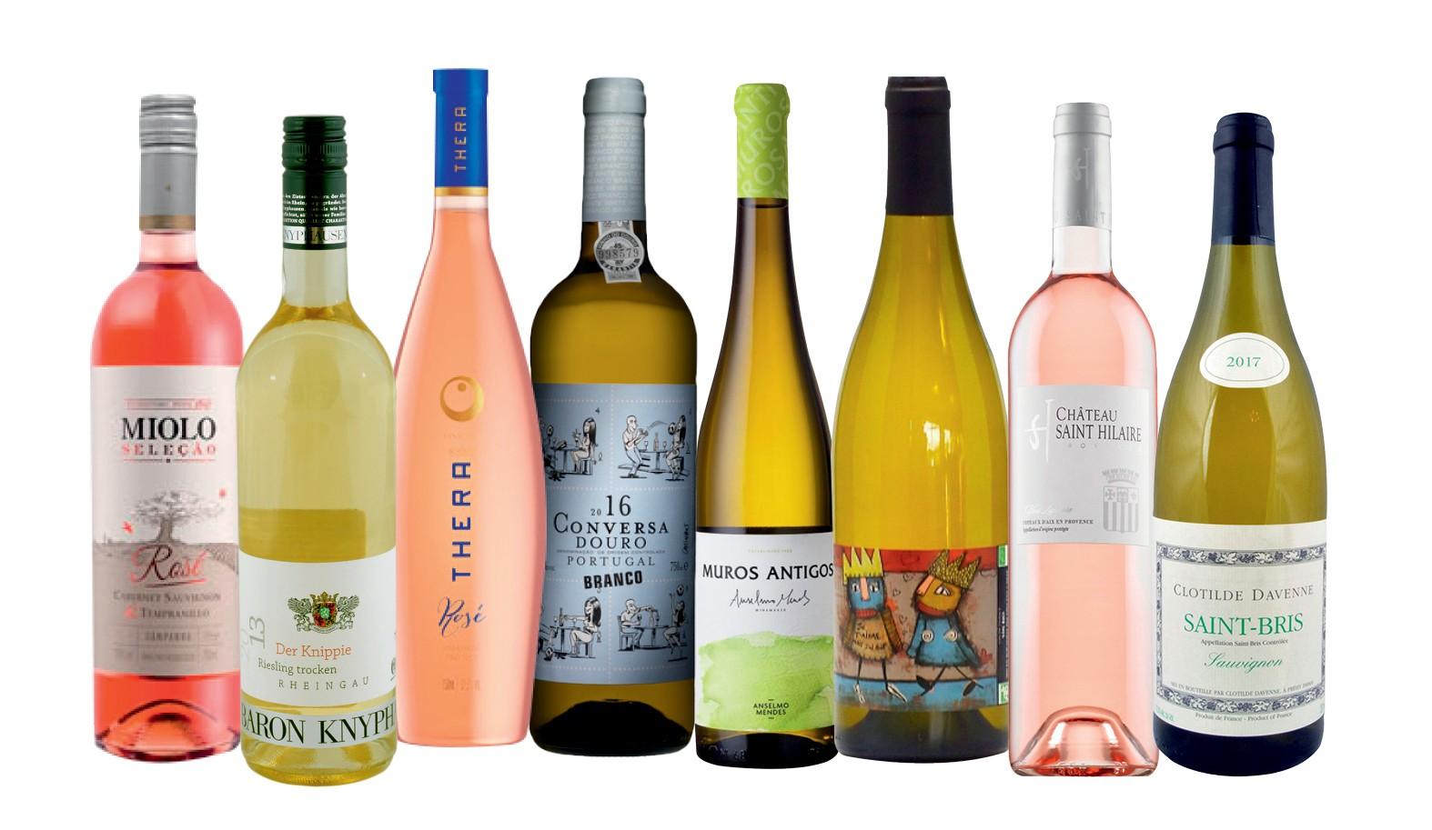Vinhos verao (Foto: divulgação)
