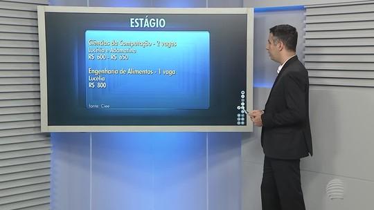 Confira as oportunidades de estágio na região de Presidente Prudente
