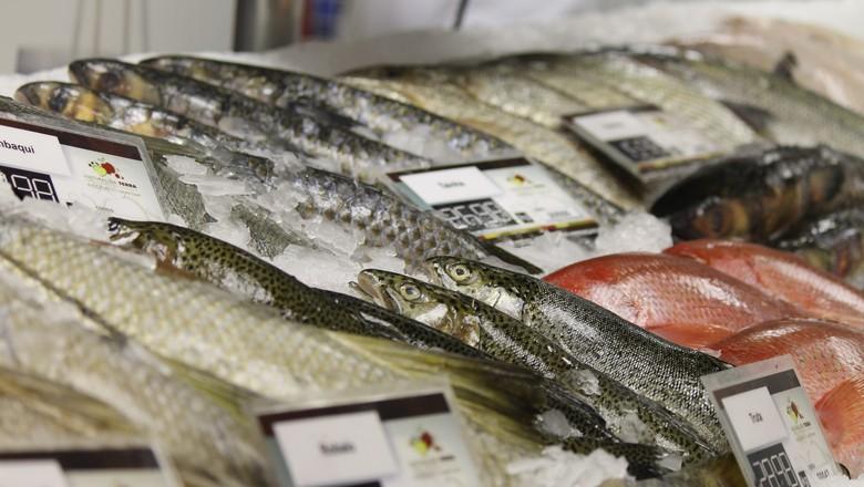 criacao_peixe_mercado (Foto: Filipe Borin/Ed. Globo)