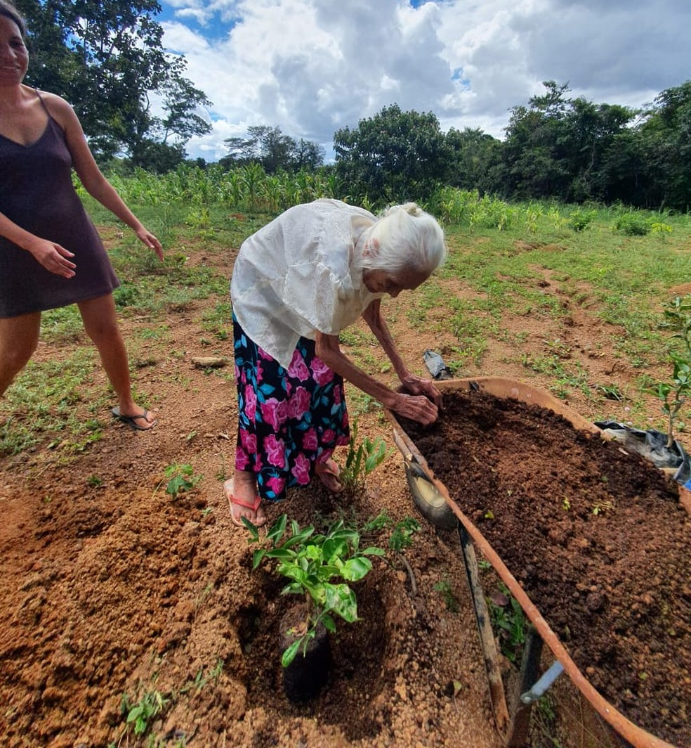 Vovó influencer faz sucesso nas redes sociais mostrando rotina em fazenda — Foto: Arquivo Pessoal