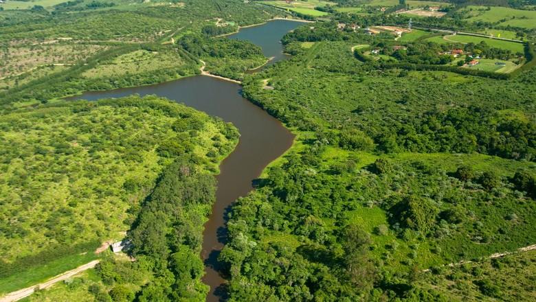 sos-mata-atlantica-floresta (Foto: Centro de Experimentos Florestais SOS Mata Atlântica - Brasil Kirin)