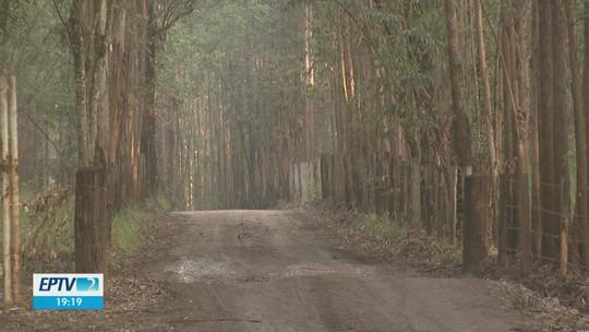 Motoristas de Rio Claro são alvos de dois criminosos armados na estrada de horto florestal