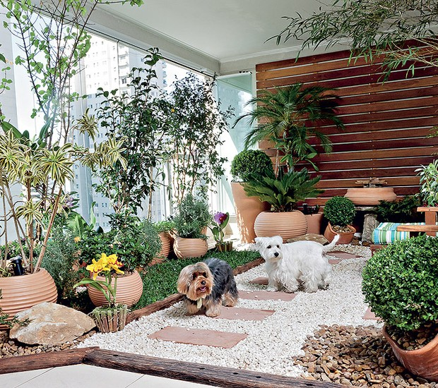 Mesmo morando em apartamento, os cães Billy e Burtikus podem brincar na grama – e também usá-la para fazer as necessidades (Foto: Ilana Bar / Casa e Jardim)