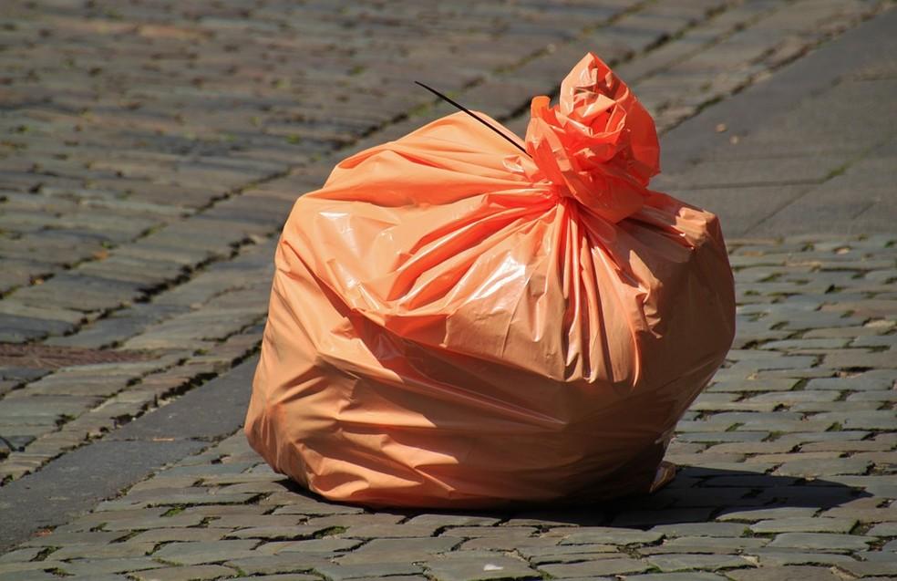 Sacolas de papel ainda são populares nos EUA, mas duram menos do que as de plástico Afinal, qual é melhor? — Foto: Pixabay