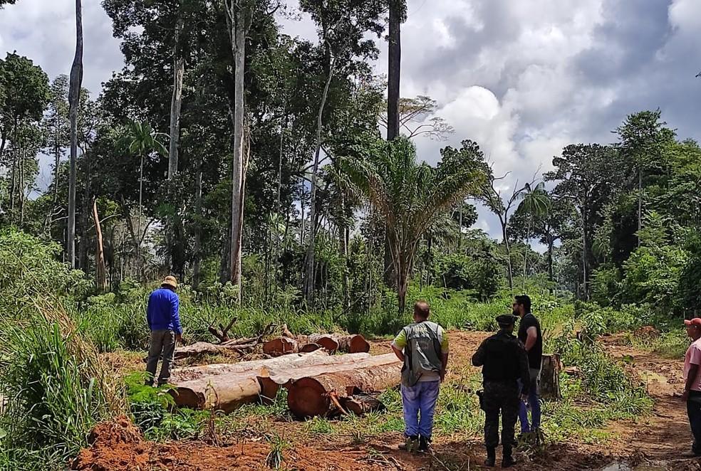 Em operação contra crimes ambientais, três são presos e mais de 300 m³ de madeira são apreendidos no AC — Foto: Arquivo/Sejusp