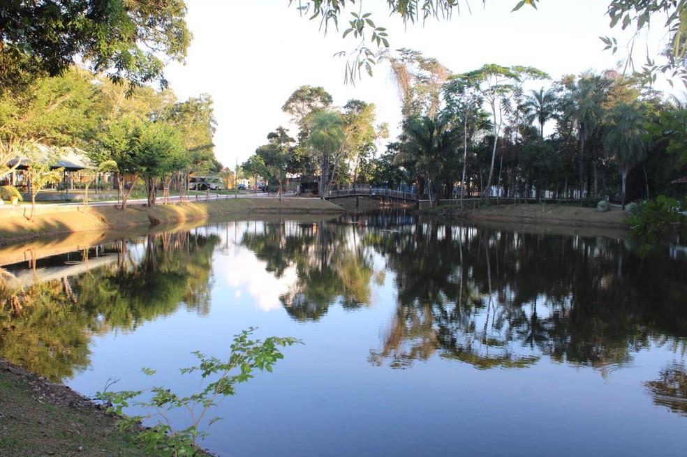 Parque Estadual Alberto Löfgren, o Horto Florestal, localizado na Zona Norte da cidade de São Paulo — Foto: Arquivo/ Secretaria de Meio Ambiente de Rio Branco