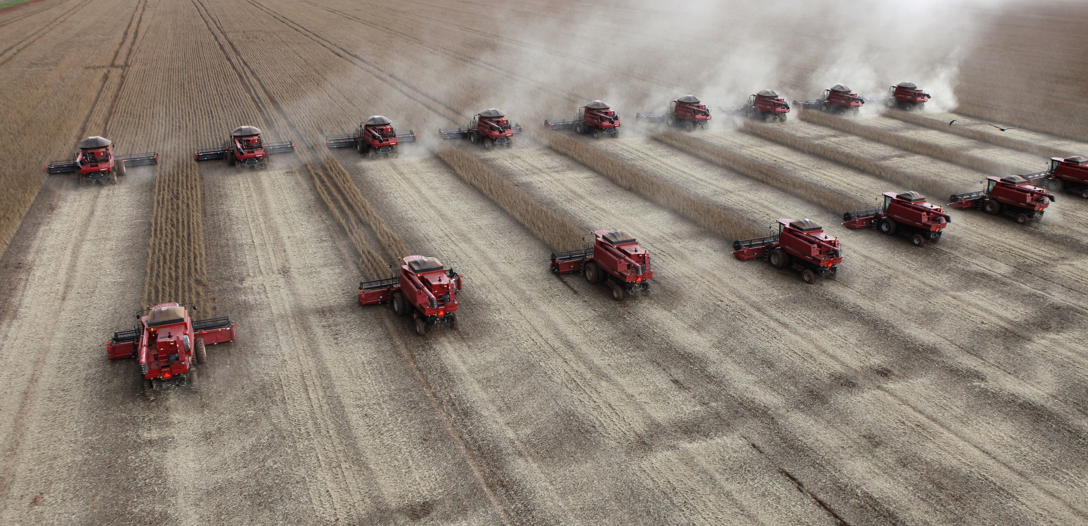 Colheita de soja em Tangará da Serra (MT) 27/03/2012 (Foto: Paulo Whitaker/Reuters)