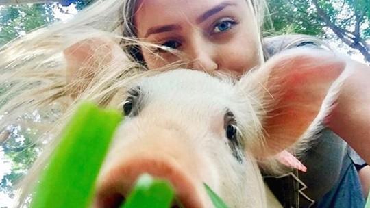 Paula 'faz as pazes' com Pippa, sua porca de estimação: 'Ela voltou a me seguir'