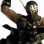 Ninja Gaiden 3: The Ancient Ship