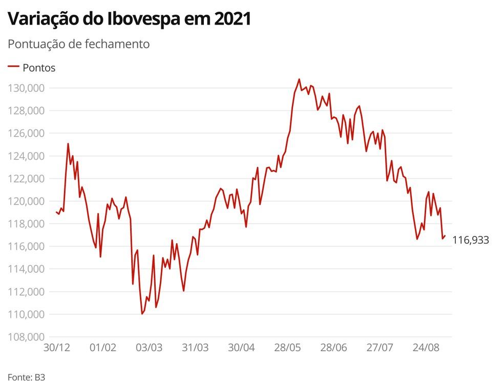 Variação do Ibovespa em 2021 — Foto: G1 Economia