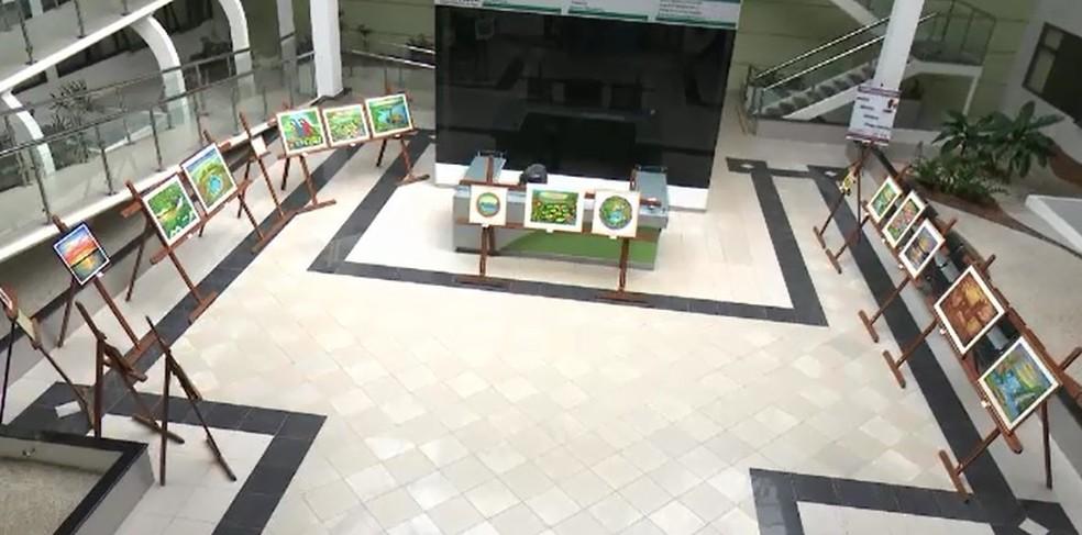 Obras estão expostas no salão no salão de exposições da Justiça Federal em Rio Branco  (Foto: Reprodução/Rede Amazônica Acre)