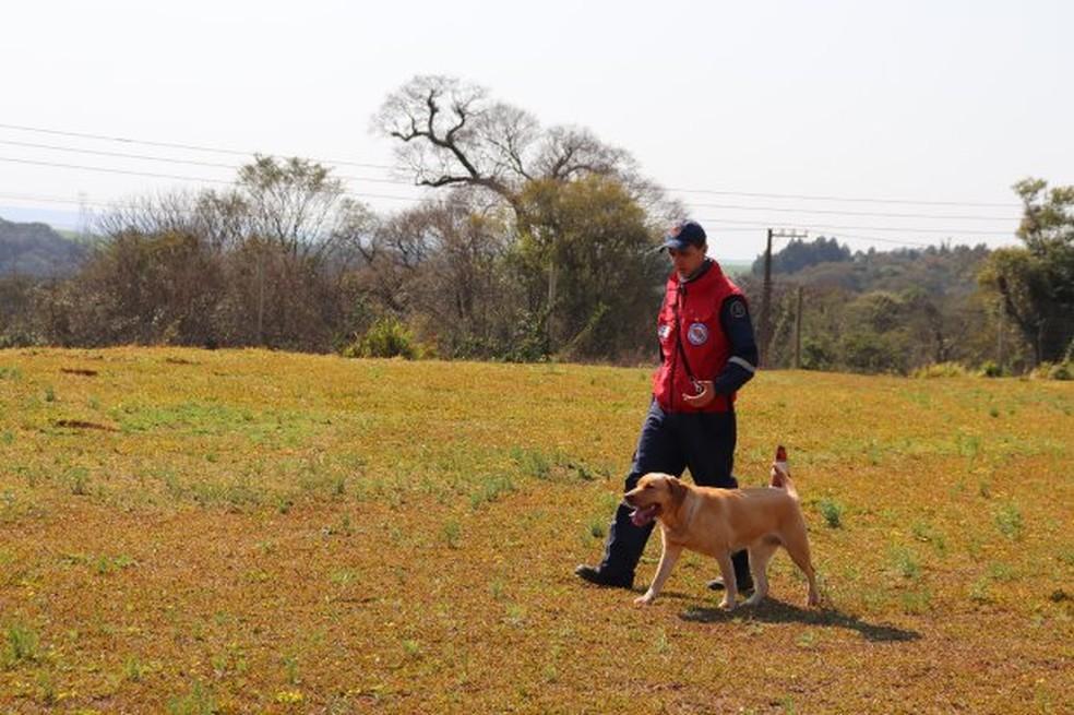 Sol e soldado Pinheiro durante etapa de certificação para cães de busca  — Foto: Corpo de Bombeiros Militar de SC/Divulgação