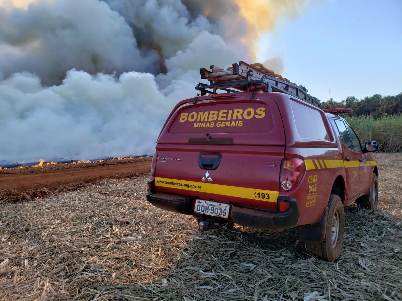 Com média de 3 incêndios por hora, Minas investiu R$ 54 milhões com combate às chamas em 2021