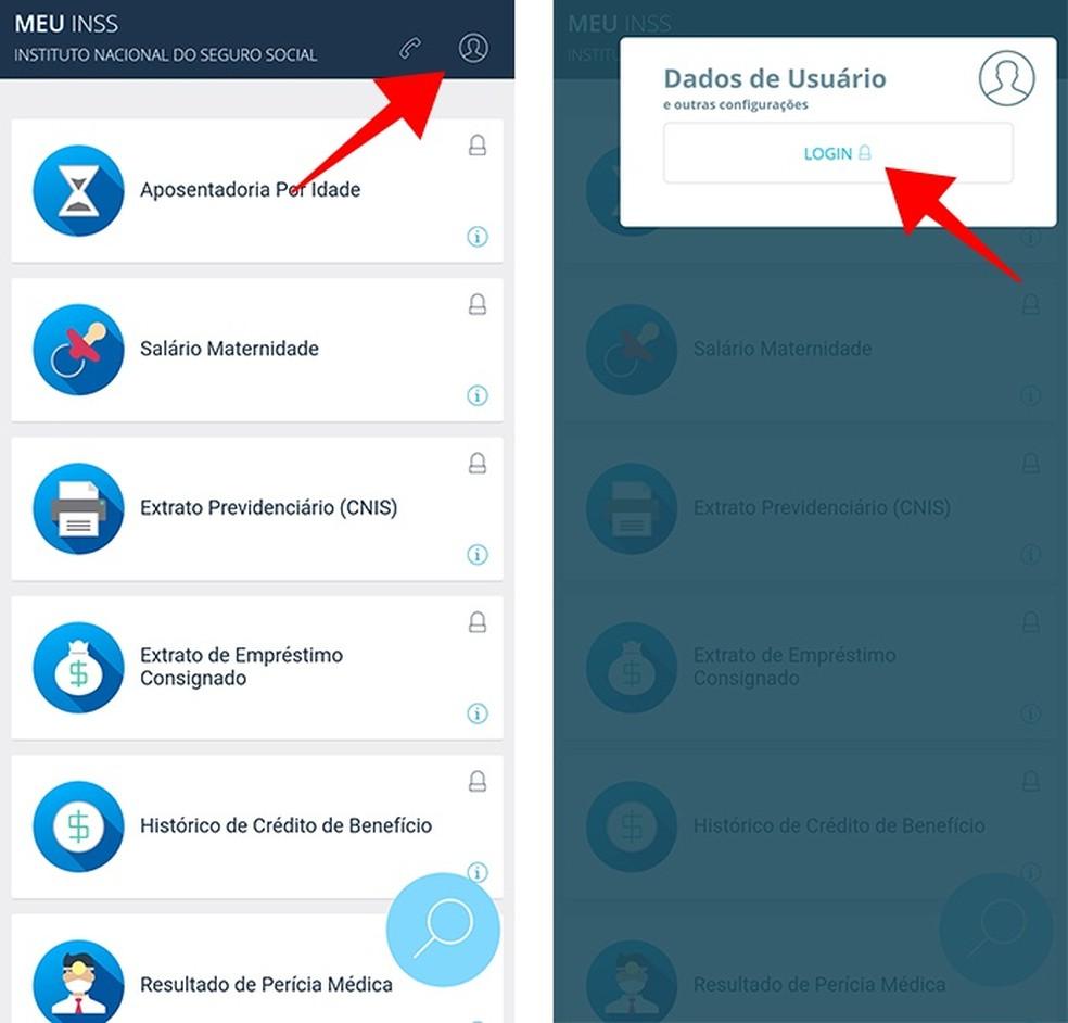 Acesse a página de login do app Meu INSS (Foto: Reprodução/Paulo Alves)