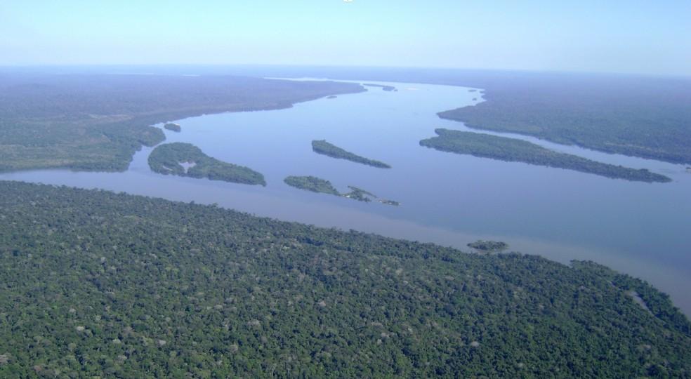 Floresta Nacional de Itaituba I — Foto: Reprodução / ICMBio