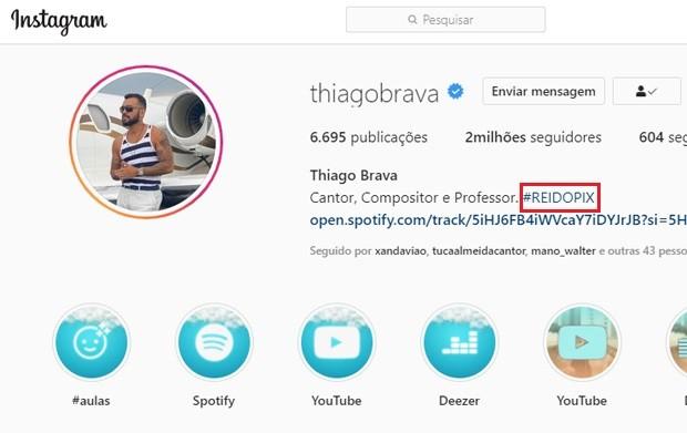 Thiago Brava, o Rei do Pix (Foto: Reprodução/Instagram)