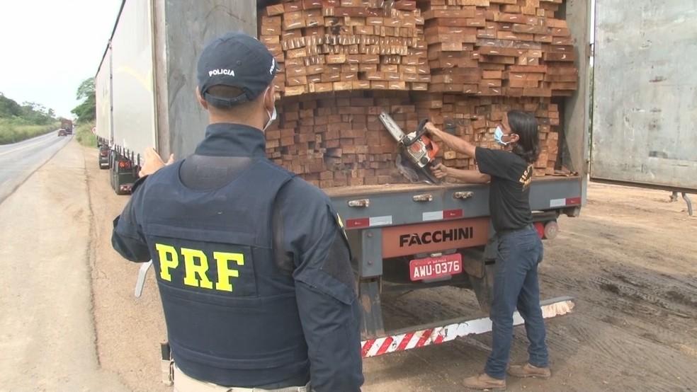 Agente coletando amostras de madeira para análise — Foto: Rede Amazônica/Reprodução