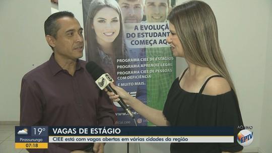 CIEE tem 242 vagas de estágio em Araraquara, São Carlos e mais quatro cidades da região