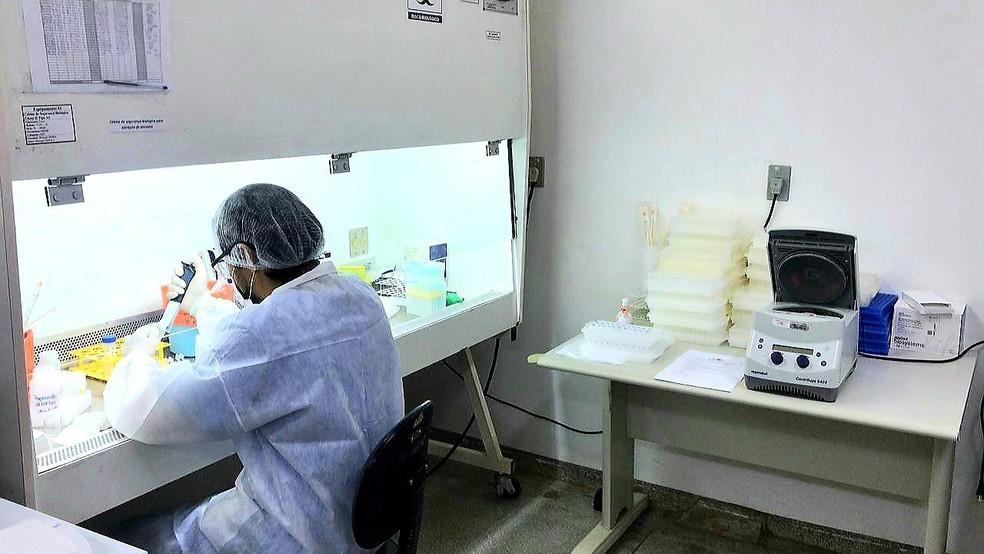 Diagnósticos da Covid-19 — Foto: Divulgação/Secretaria Estadual da Saúde