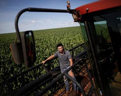Quebra na 2ª safra reduz em 8,4% a produção de milho do Brasil