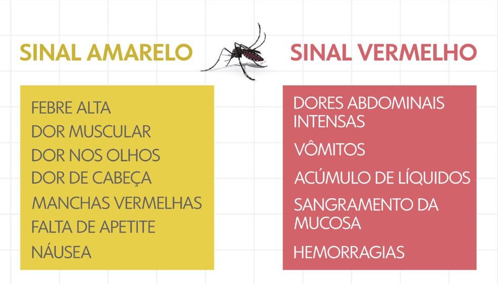 Sintomas dengue — Foto: Arte/TV Globo