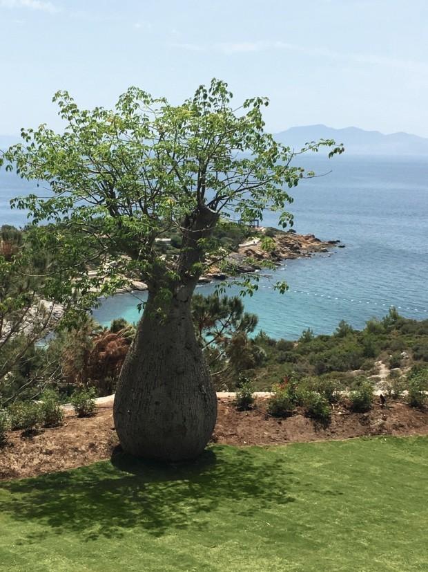 Balneário de Kaplankaya é destino zen na Turquia (Foto: Conde Nast Traveller + assessoria: John Athimaritis/divulgação e Emre Başak/divulgação )