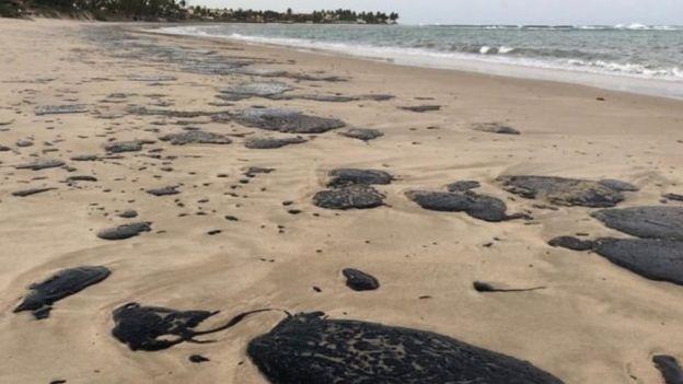 O plano para conter derrames de petróleo que não foi acionado pelo governo federal para o Nordeste - Notícias - Plantão Diário