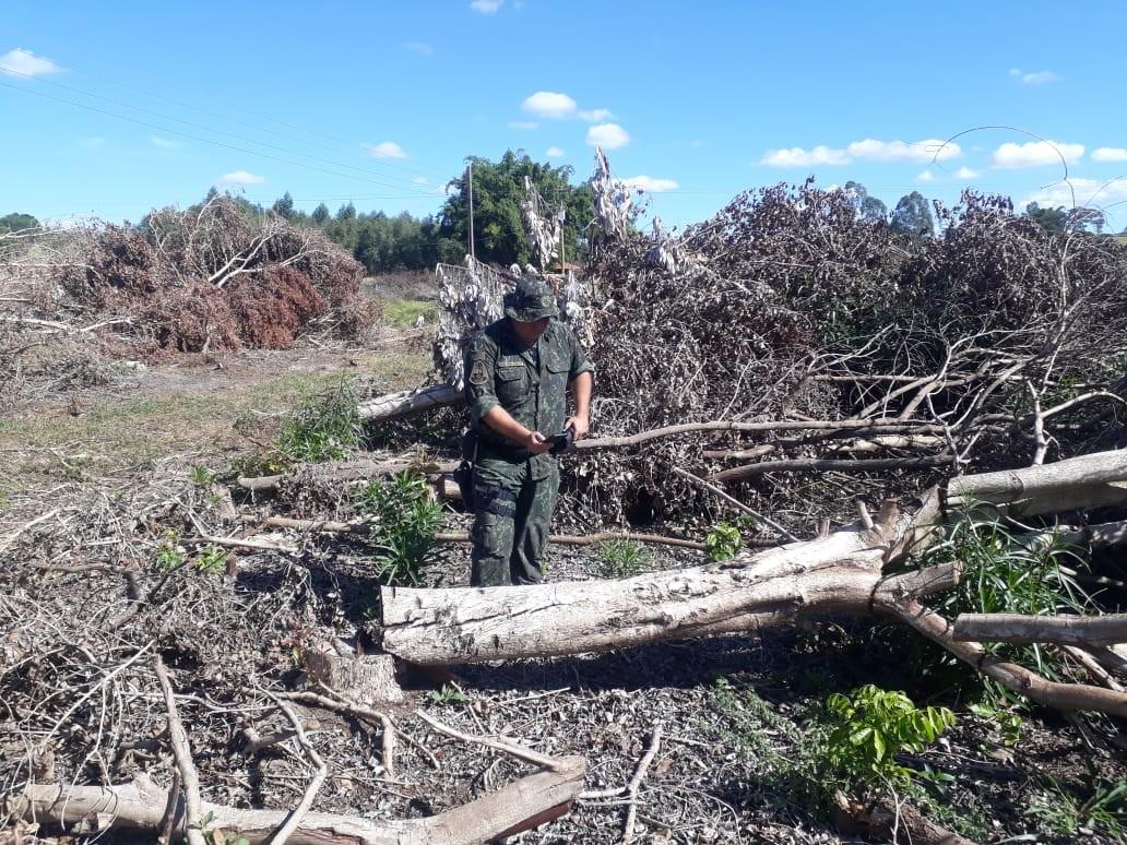Sitiante é multado em R$ 6,8 mil por desmatamento de vegetação nativa em Irapuru