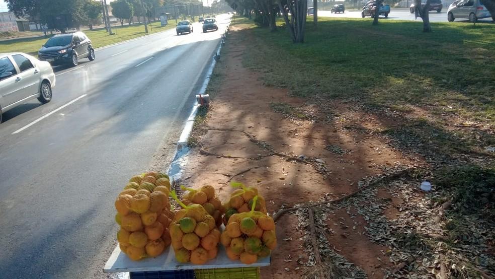 Atualmente, Lucas Moreira de Souza trabalha com venda de frutas em um semáforo de Ceilândia, no DF — Foto: Arquivo pessoal